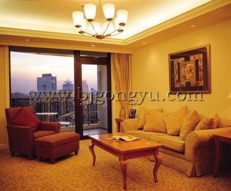 盛捷福景苑酒店式公寓福景苑客厅