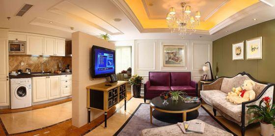 山水广场(山水铂宫)公寓1户型一居室71平米