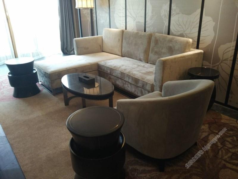 北京雅诗阁山水文园服务公寓起居室