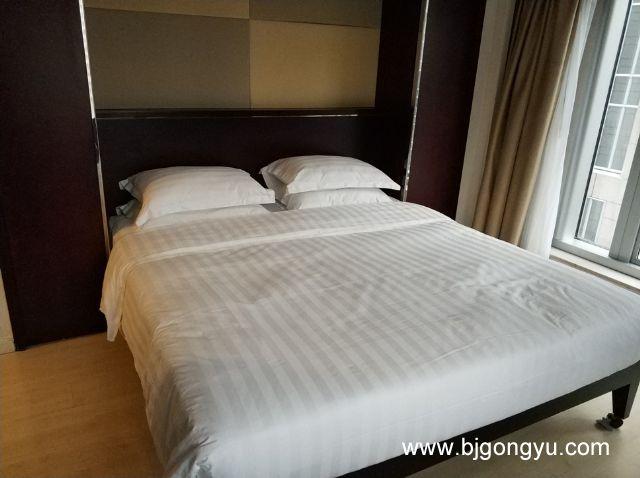 北京东方豪庭(东方广场)公寓室内实景图